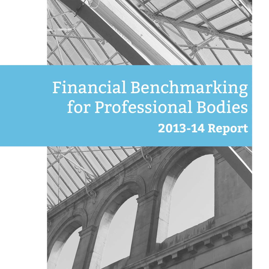 Report: Financial Benchmarking for Professional Bodies: 2013-14