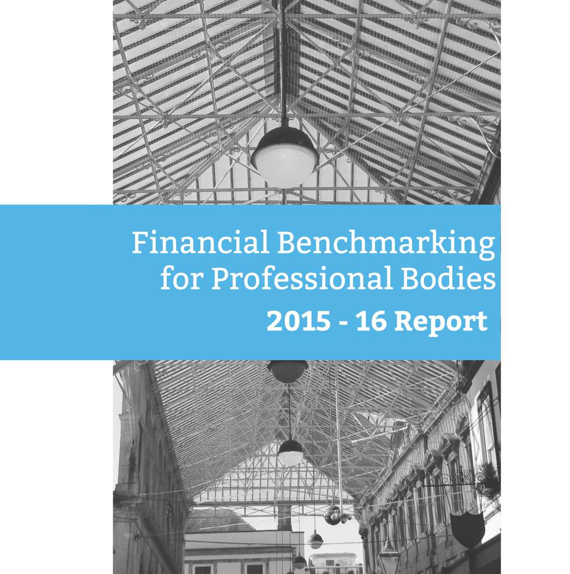 Report: Financial Benchmarking for Professional Bodies: 2015-6